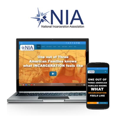 The NIA - Website Design Portfolio
